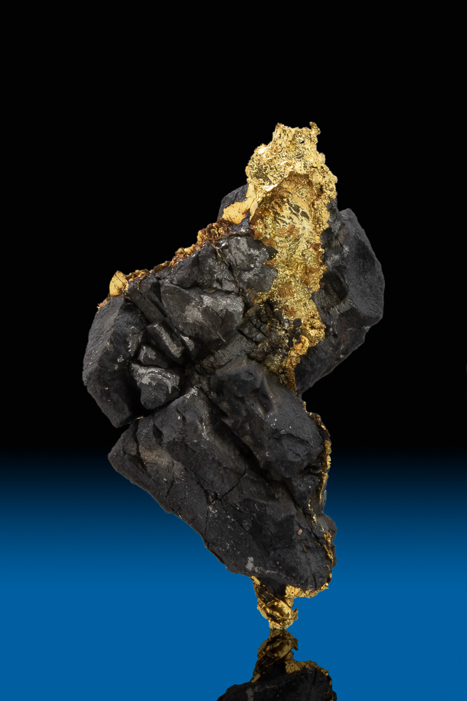 Gold on Black - Beautiful Gold and Arsenopyrite - Allegheny