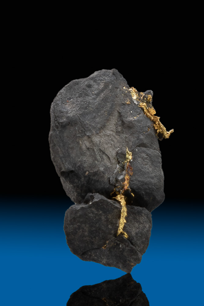 Gold on Black from the Oriental Gold Mine in Allegheny, CA