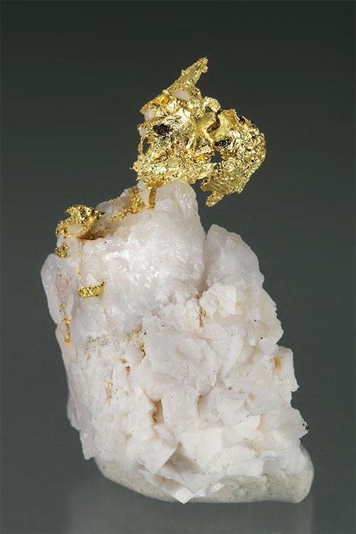 Harvard Mine Gold In Quartz Shaped like a Dragon - Click Image to Close