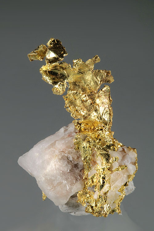 Long Band of Crystalline Gold - Harvard Mine