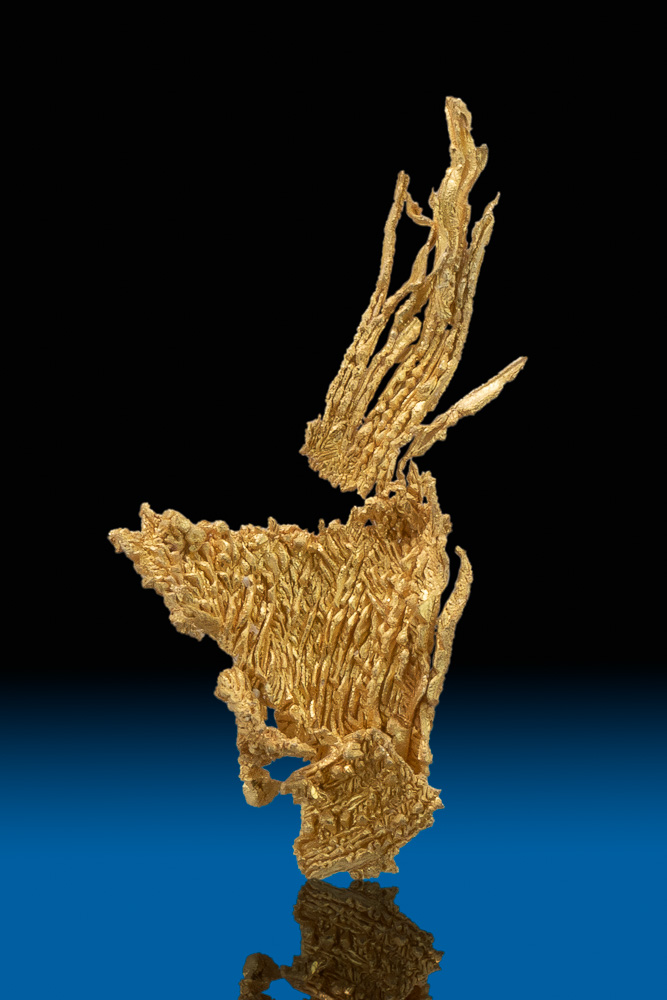 """Branching Wires"" A Brilliant Wire Gold Specimen - Nevada"