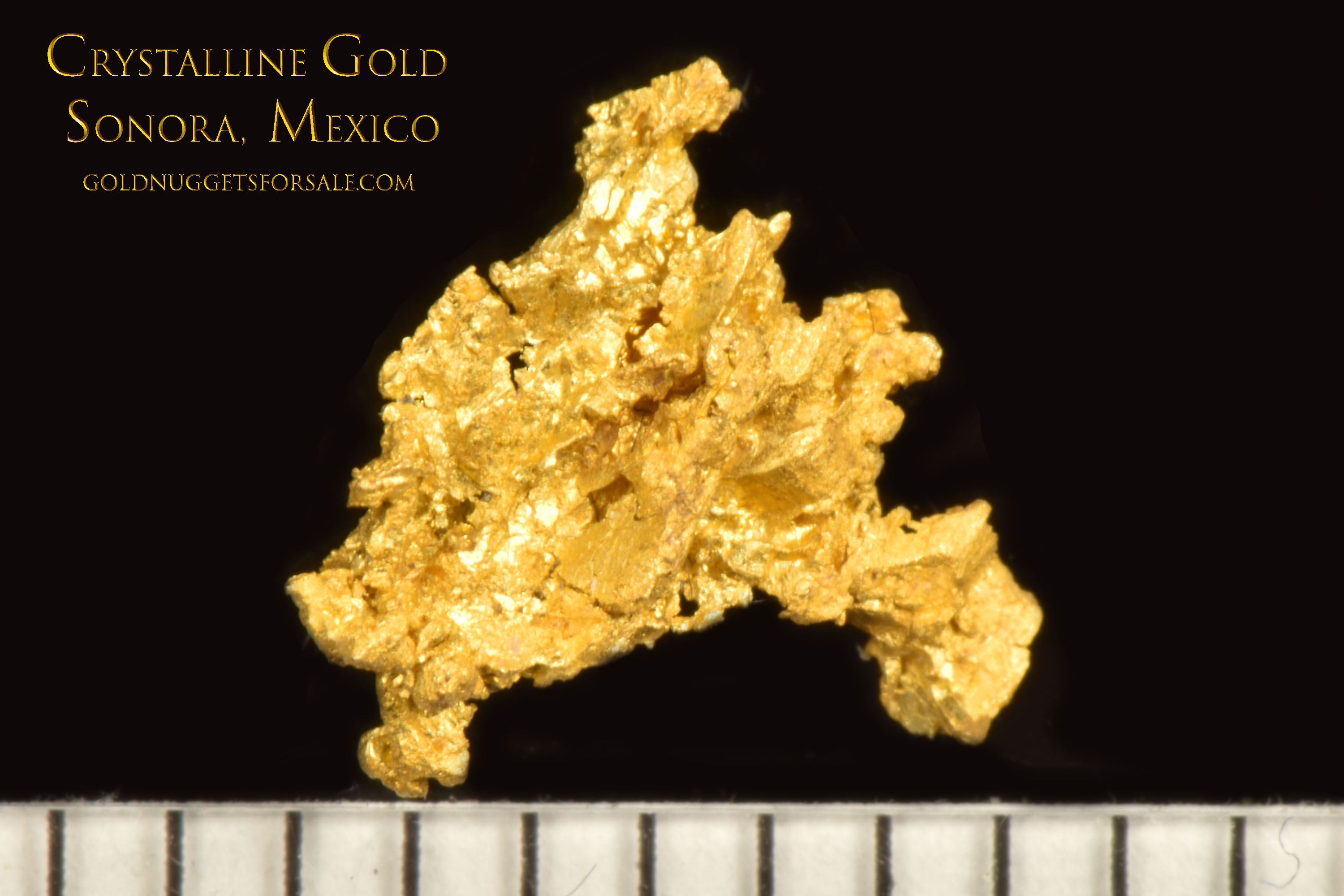 Spectacular Crystalline Gold with Gold crystals - Sonora, Mexico