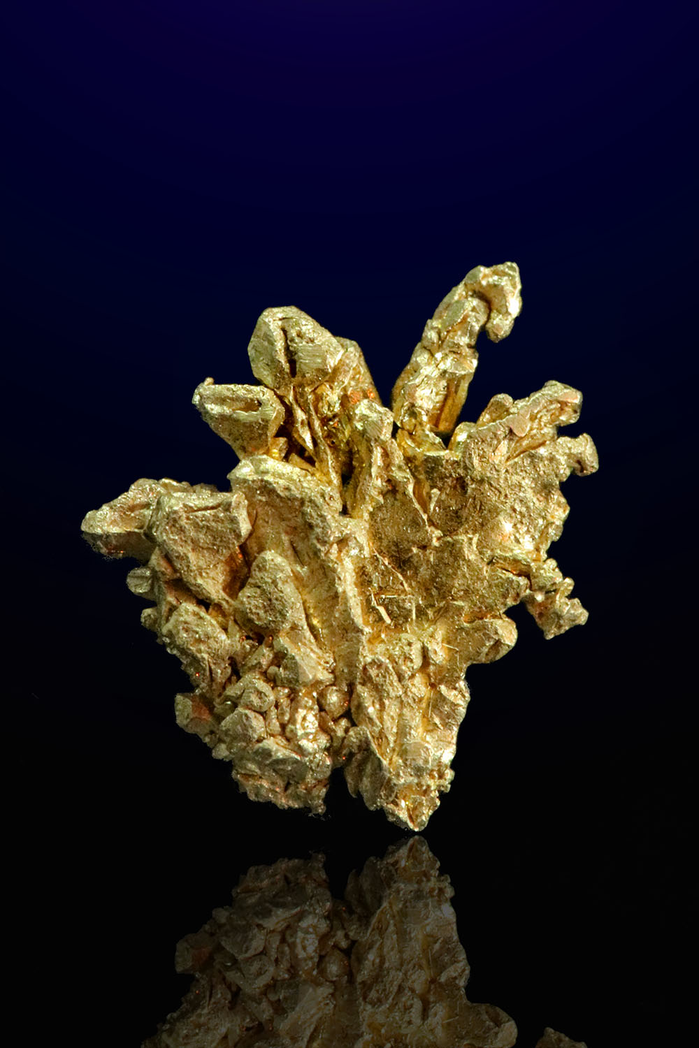 Branching Formation - Natural Gold Specimen from Mt. Kare, PNG