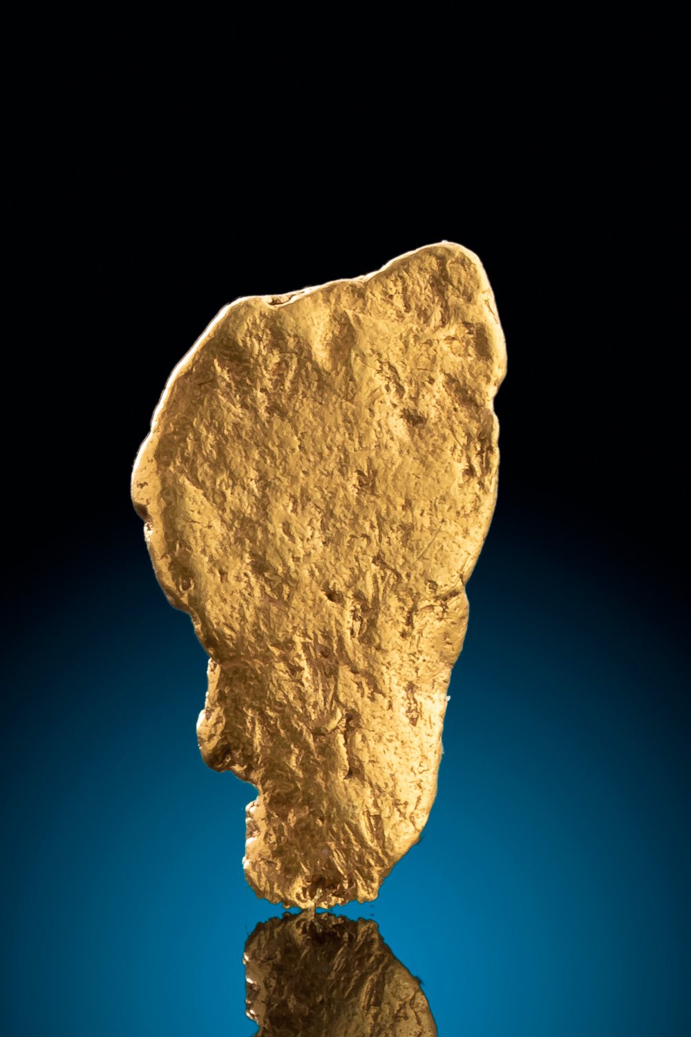 Large, Thin and Shiny - Alaska Gold Nugget