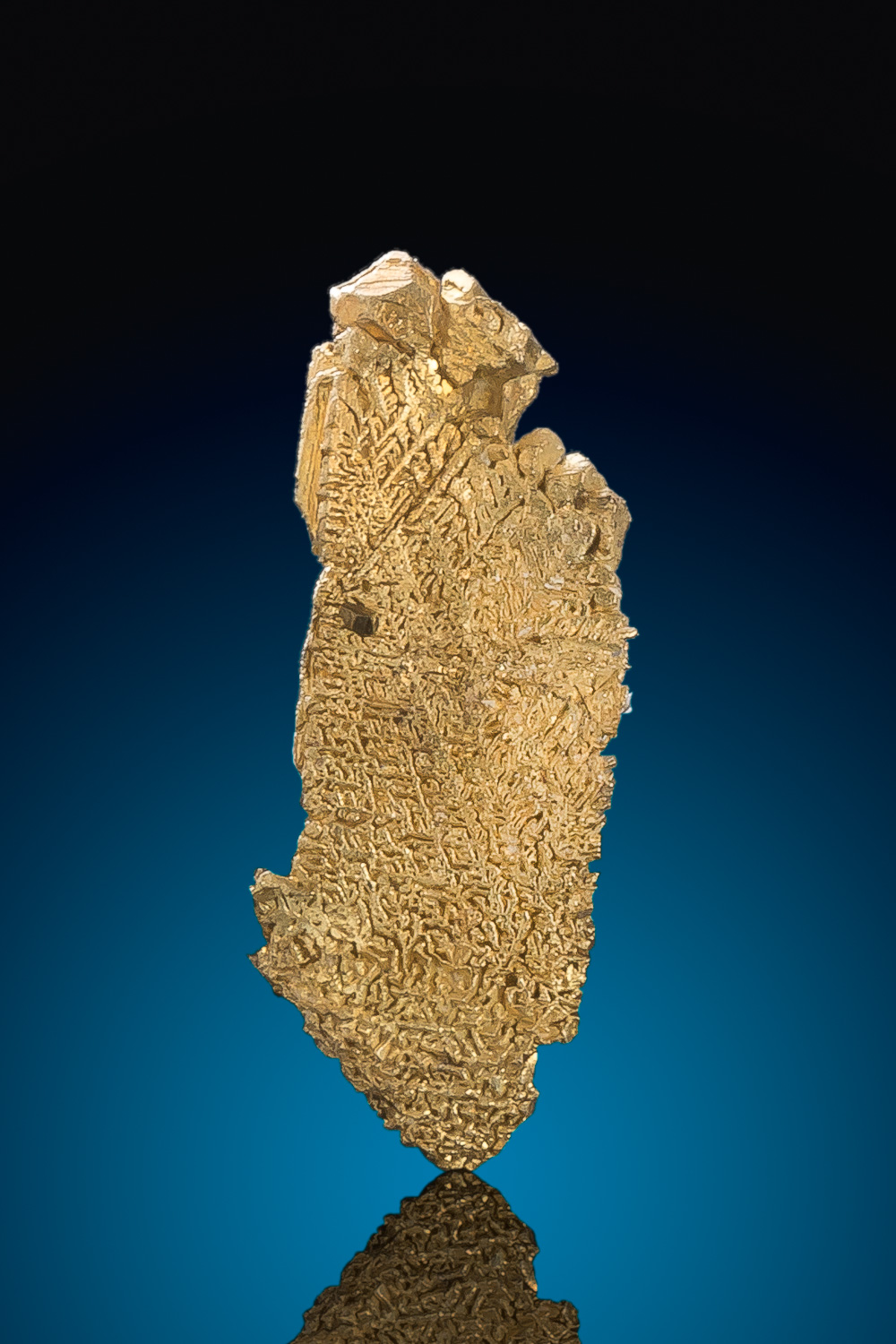 """The Foot"" - Elongated Dendritic Gold Crystal - Round Mountain"