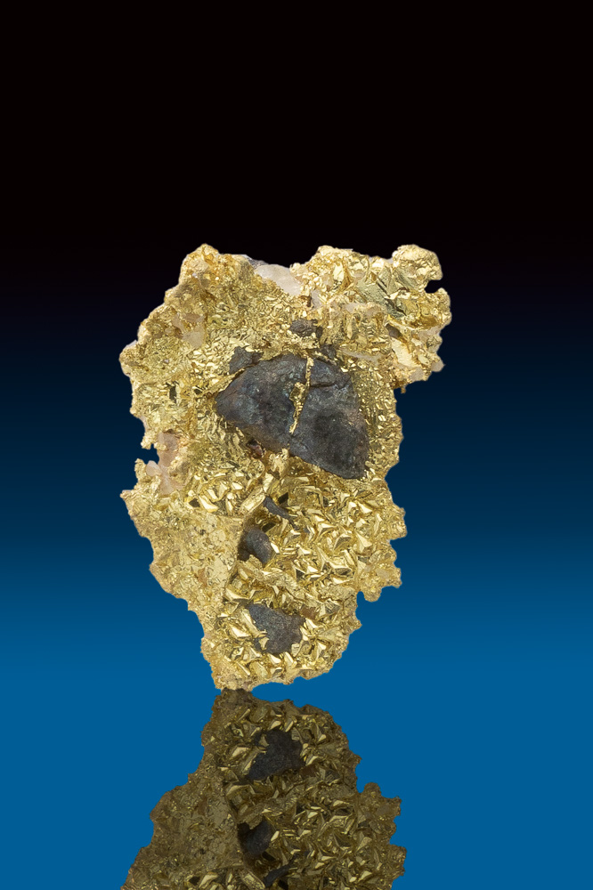 Shiny Textured Crystallized Gold and Arsenopyrite - California
