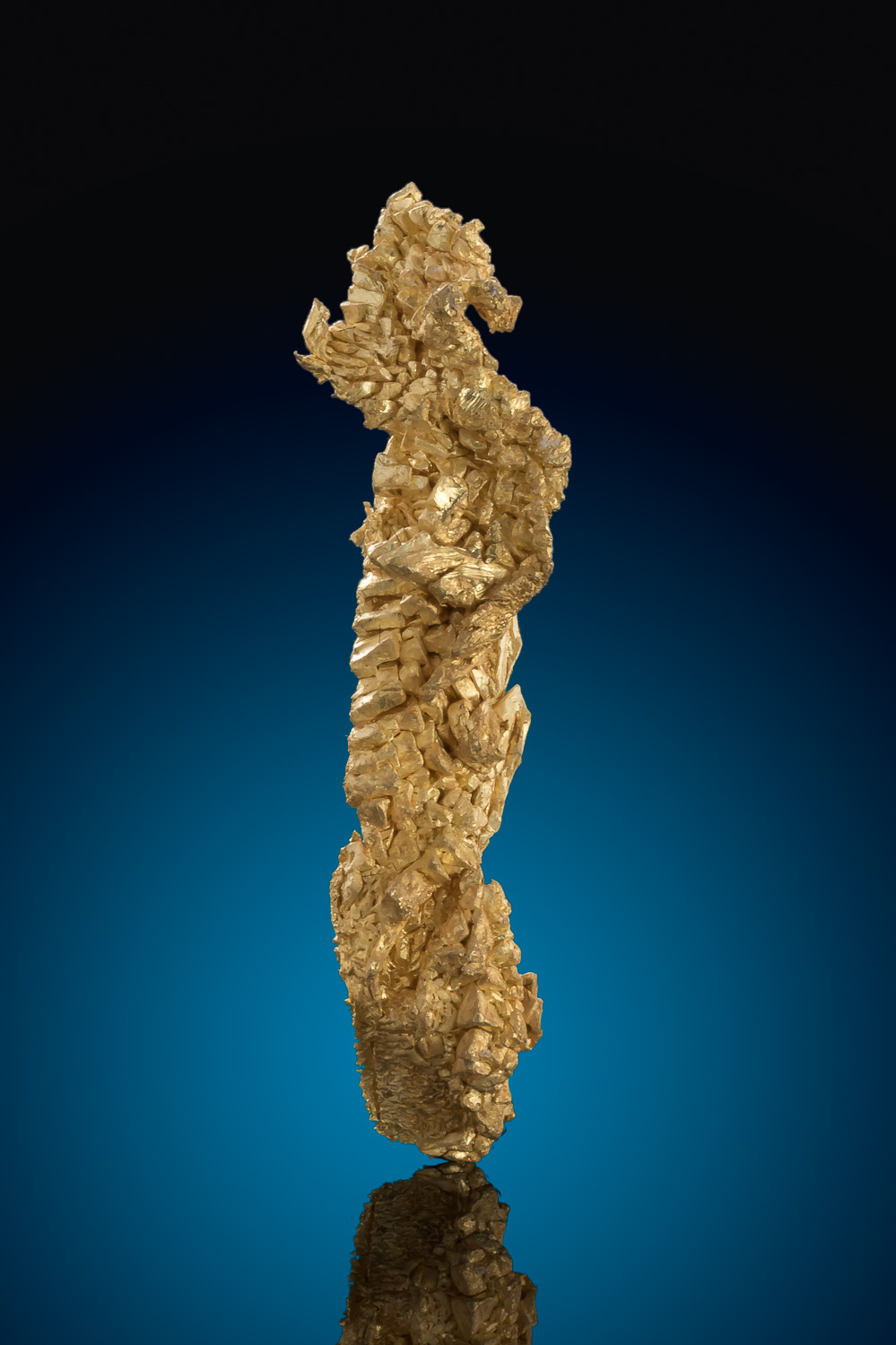Long and Curved - Well Crystalized Gold Specimen