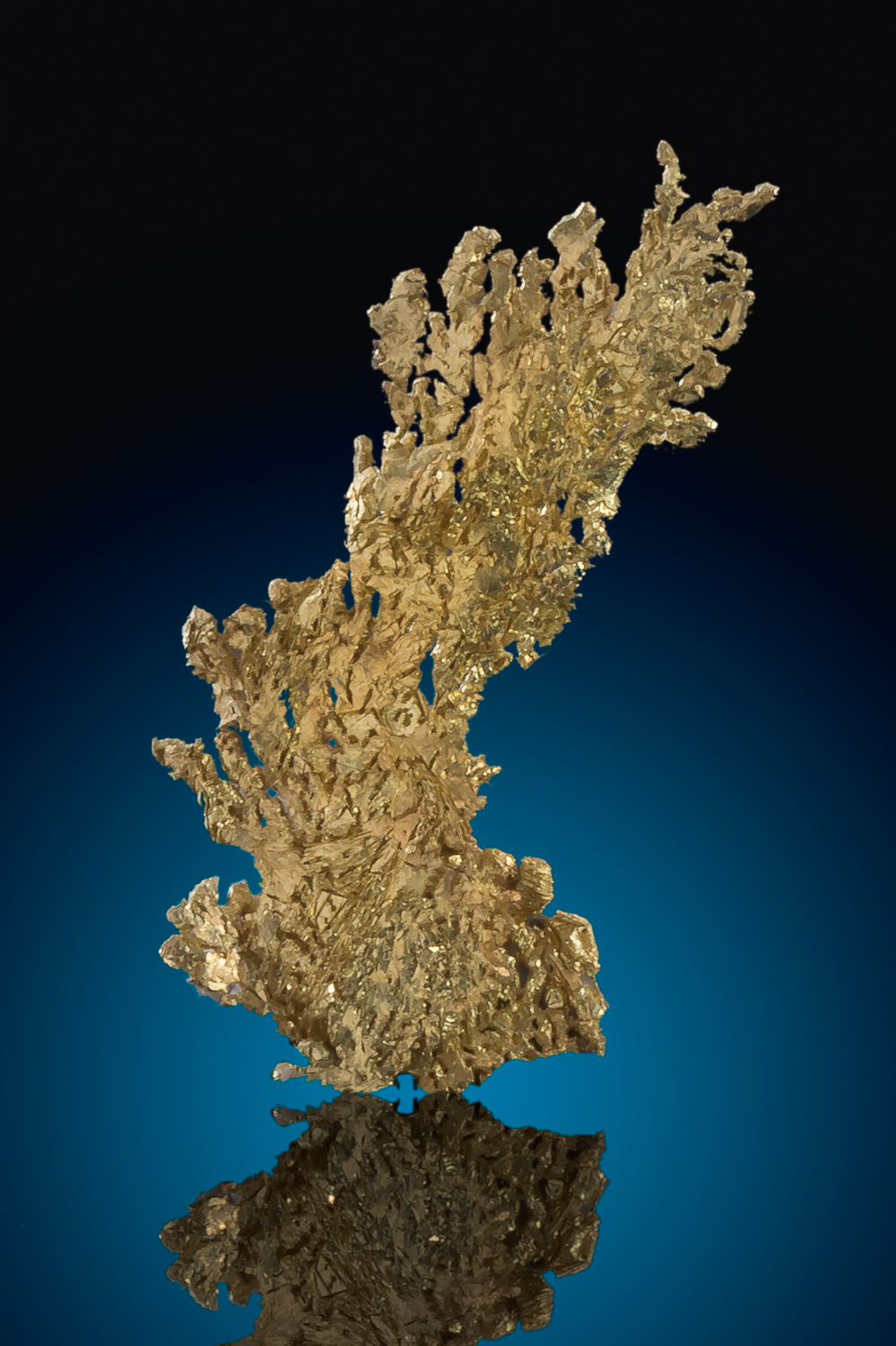 Dendritic Leaf Gold Specimen from Round Mountain