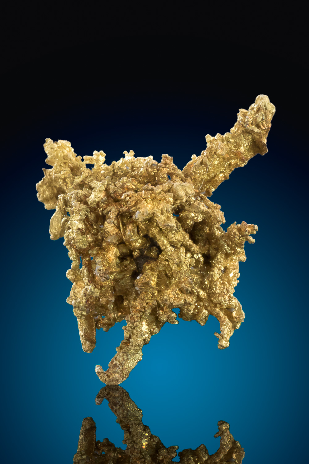 Wire Gold Cluster from the Belshazzar Mine - Idaho