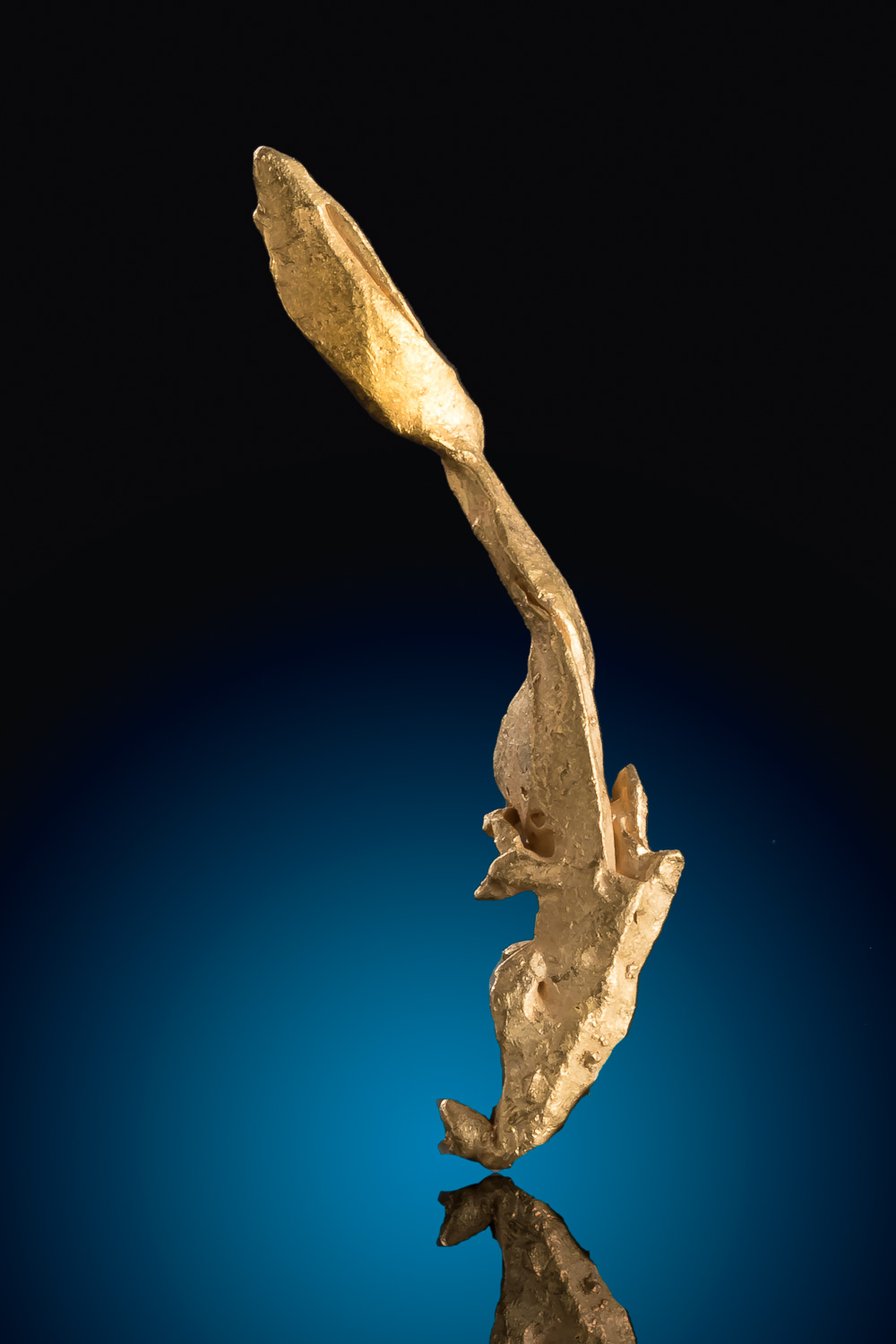 Long and Sharp Venezuela Gold Crystal