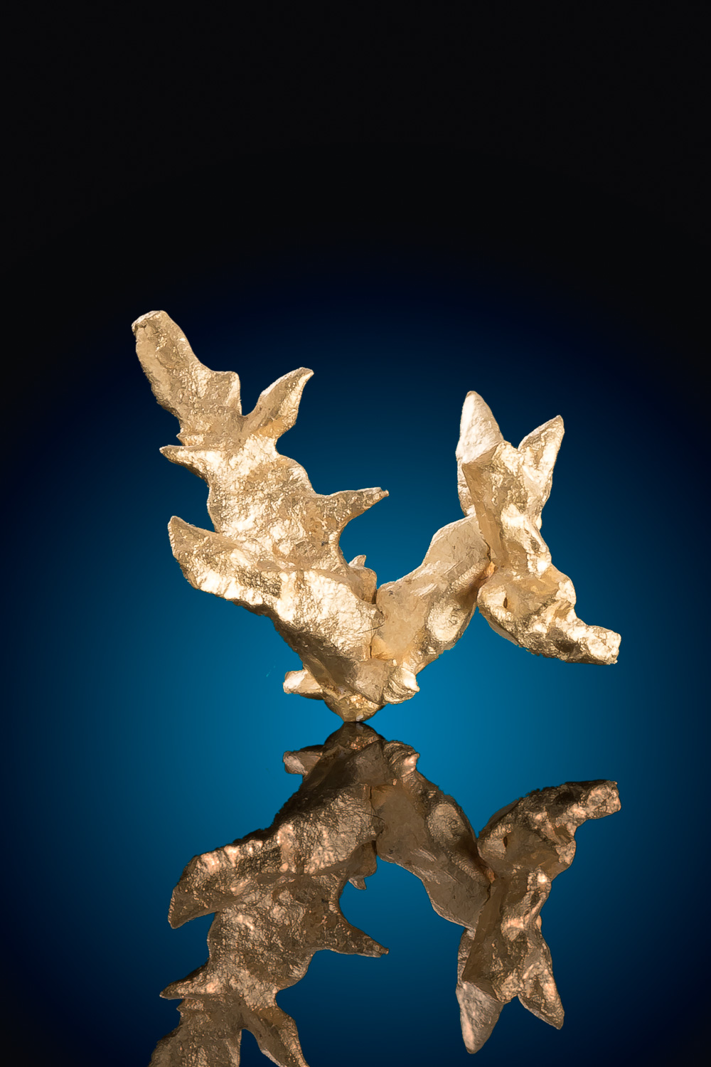 Sharp Multi-Point Venezuela Natural Gold Crystal
