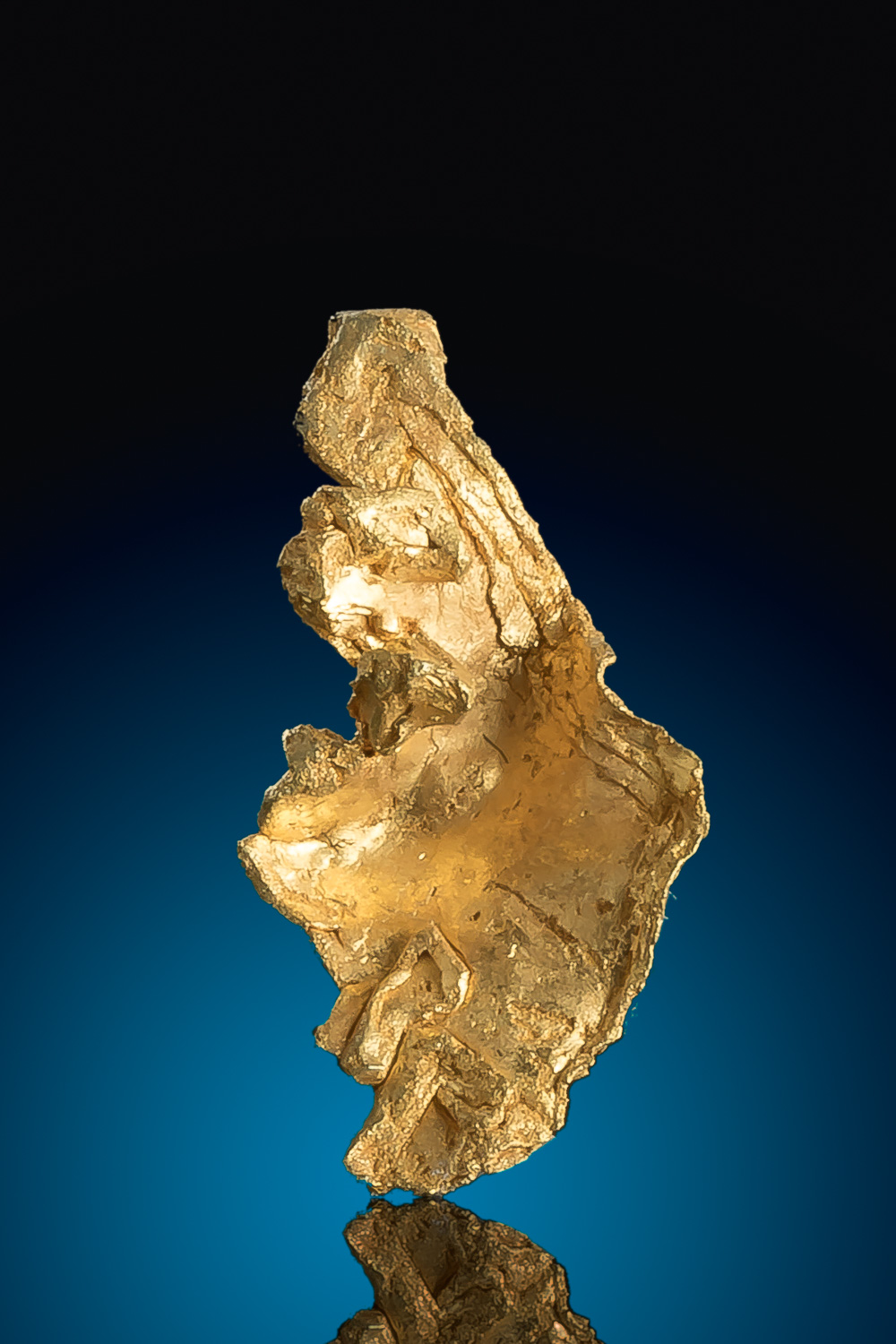 Leaf and Crystalized Natural Gold Specimen