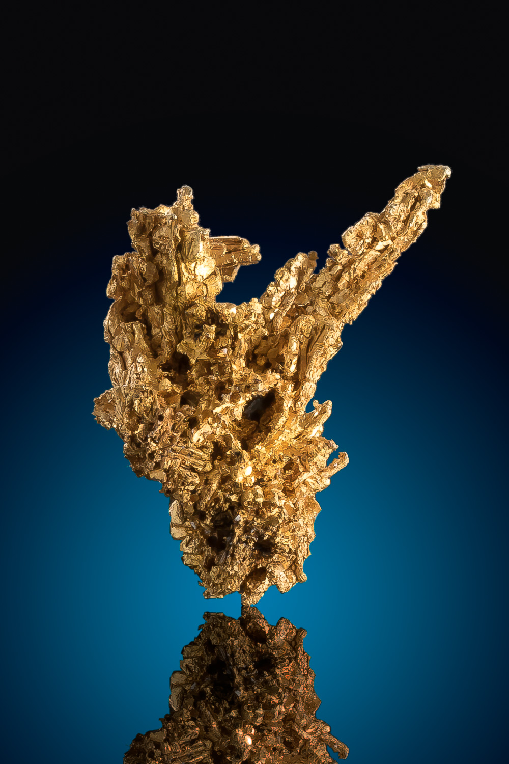 Jagged Intricate Gold Specimen from Round Mountain