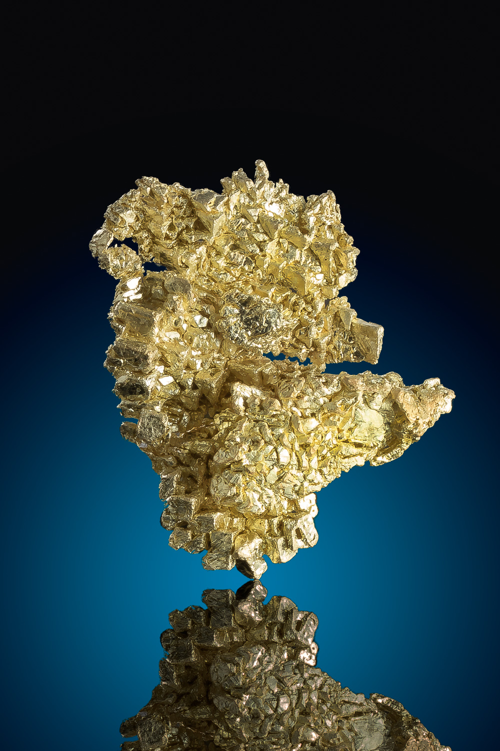 Marvelous Gold Specimen From the Famous Round Mountain Mine