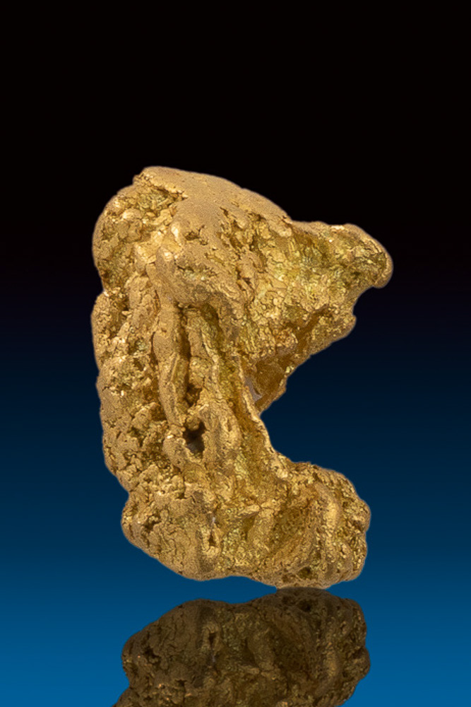 Unique Curved and Chunky - Natural Gold Nugget - Nevada