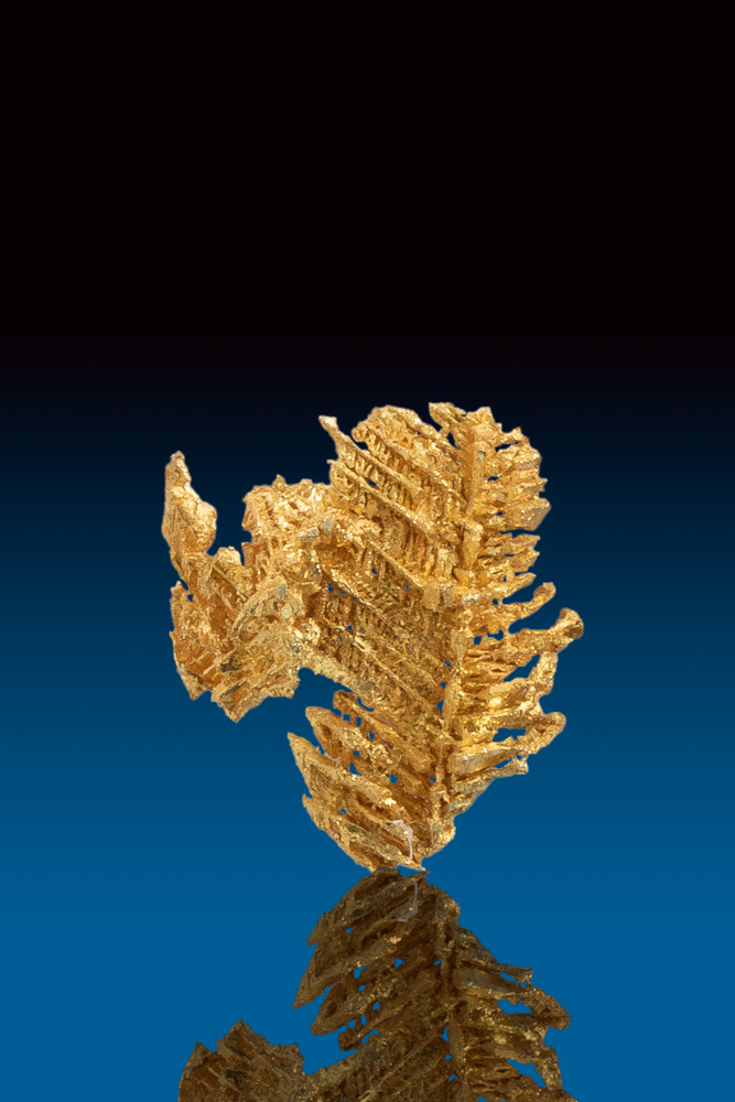 Herringbone Formation - Natural Gold Crystal from Round Mountain