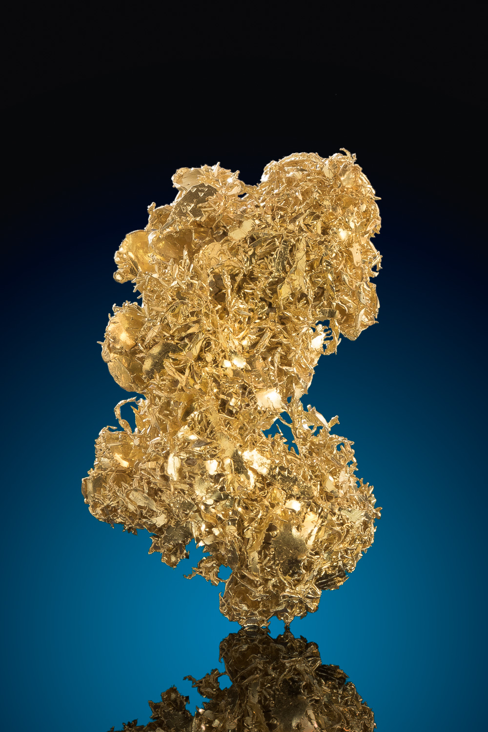 Brilliant Wire Cluster - Rare Onlinghouse Gold Specimen