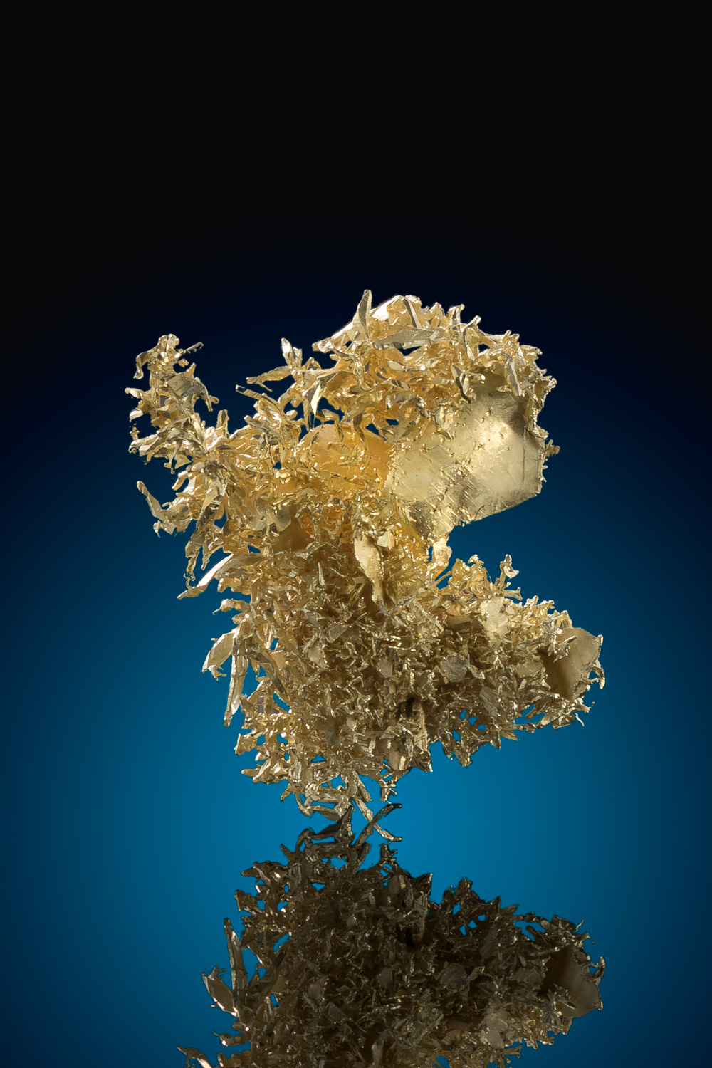 Beautiful Wire Cluster from the Olinghouse Gold Mine - Nevada