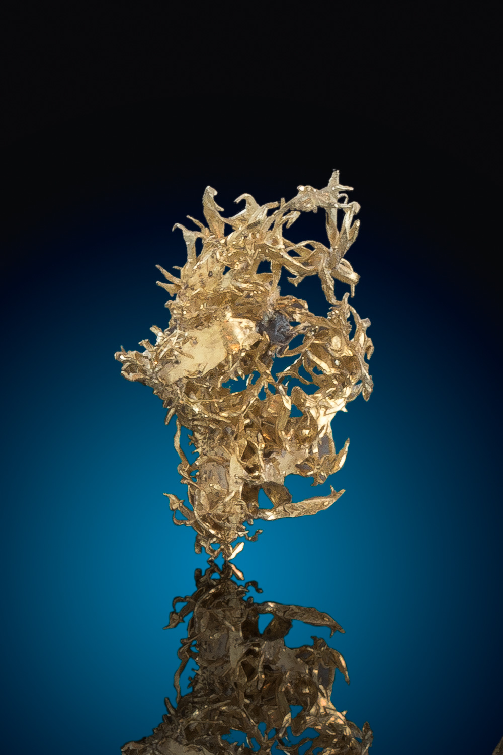 Beautiful Wire Gold Specimen from Olinhouse Mine, Nevada