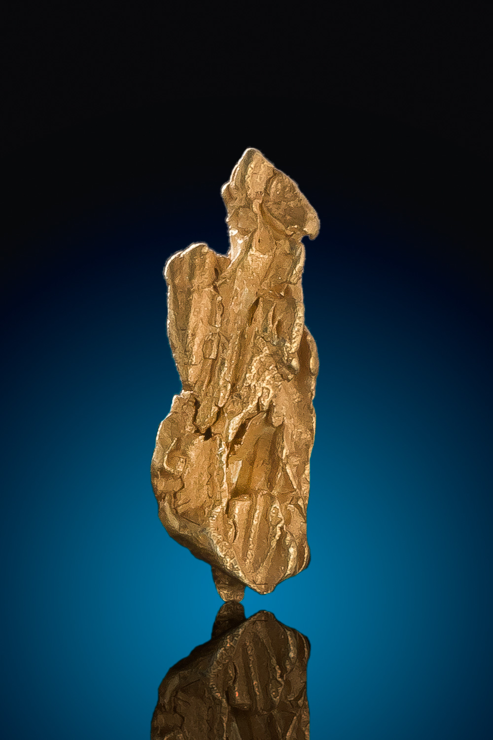 Long Gold Nugget Specimen from the Bradshaw Mountains