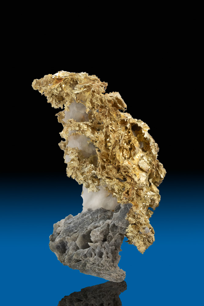 """The Bird"" Crystalized Leaf Gold on Calcite - California"