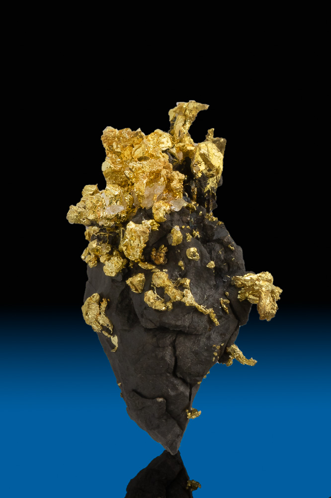 Magnificent Gold and Arsenopyrite Specimen - Allegheny, CA