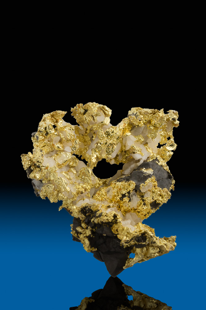 Brilliant Crystalized Gold, Quartz and Arsenopyrite - Allegheny