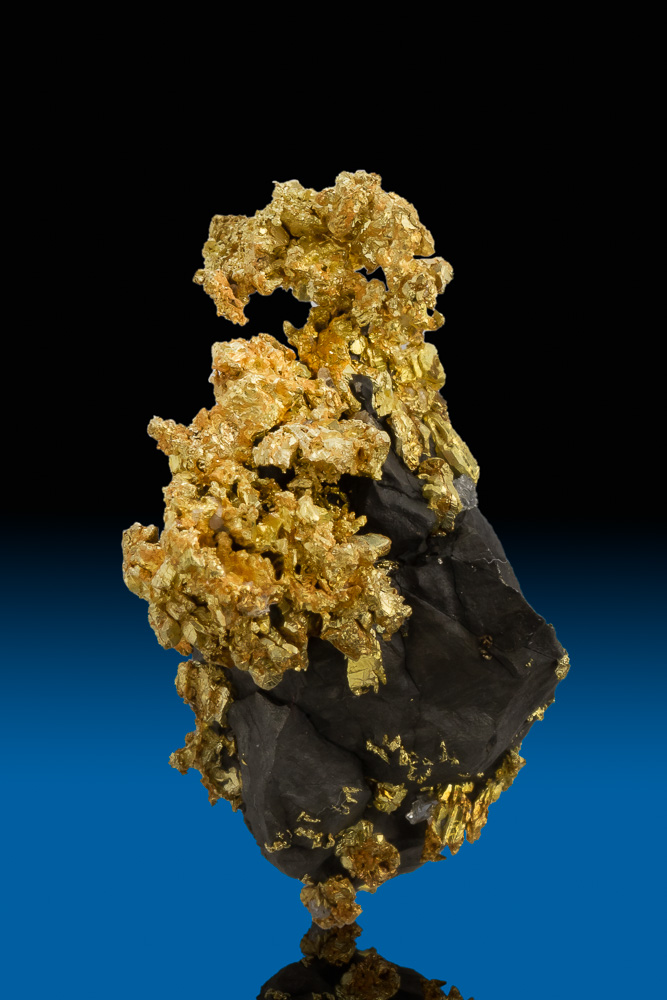 Outstanding Crystalized Gold and Arsenopyrite - Allegheny, CA