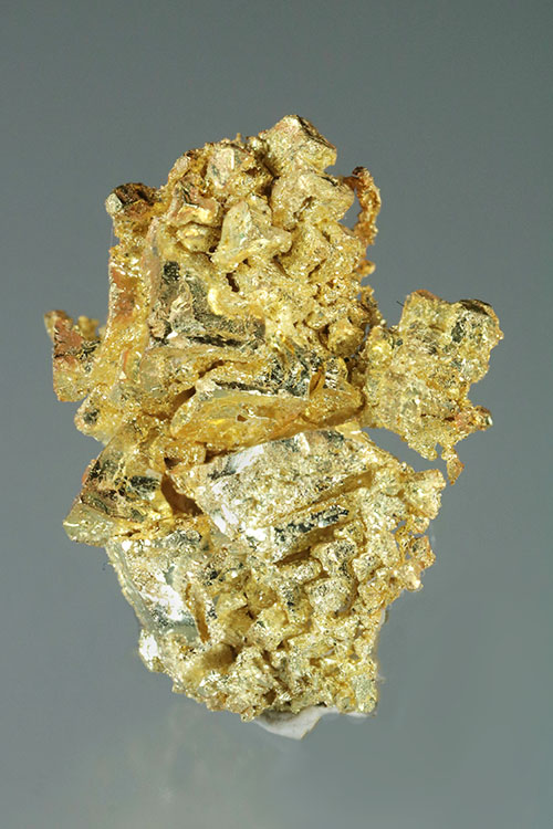 Round Mountain Dendritic Gold Specimen
