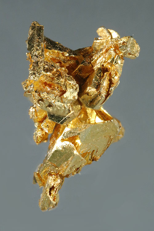 A Mass of Faceted Gold Crystals from the Round Mountain Mine