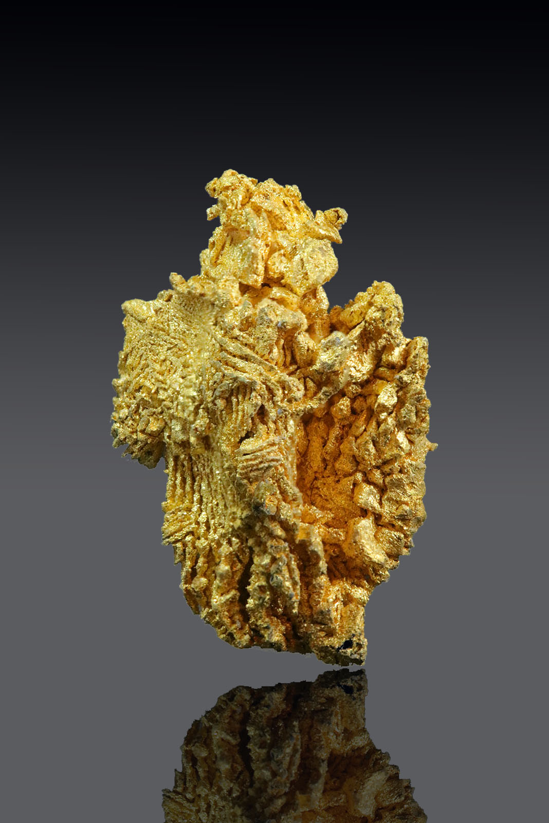 Brilliant Striated Gold Crystal - Round Mountian Gold Mine