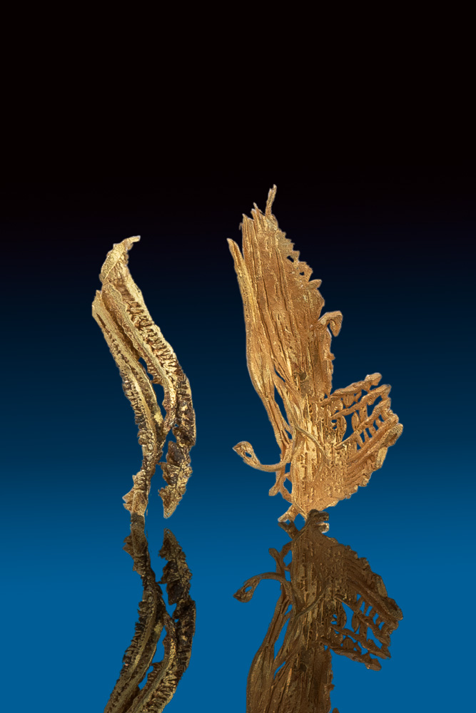 Two Amazing Gold Crystal Wire Specimens from Round Mountain