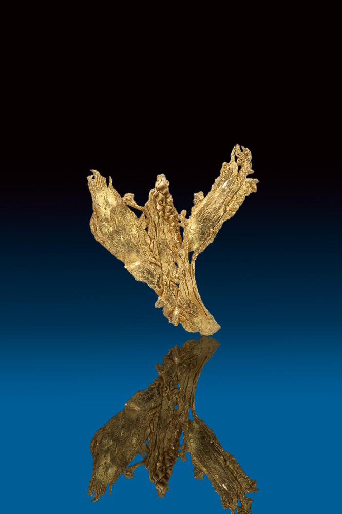 Brilliant Gold Nugget Crystal - Dendric Wire - Round Mountain