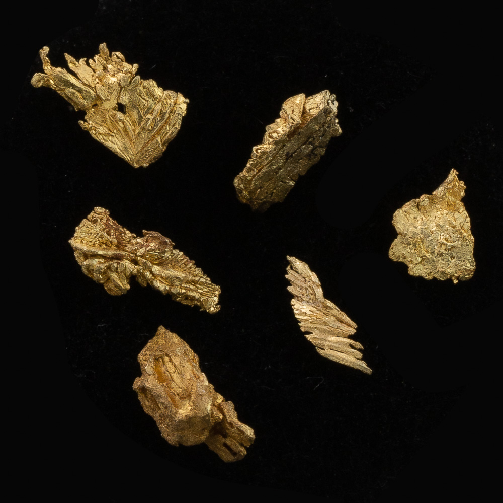 Five Intricate Gold Crystals from Round Mountain - Lot 127