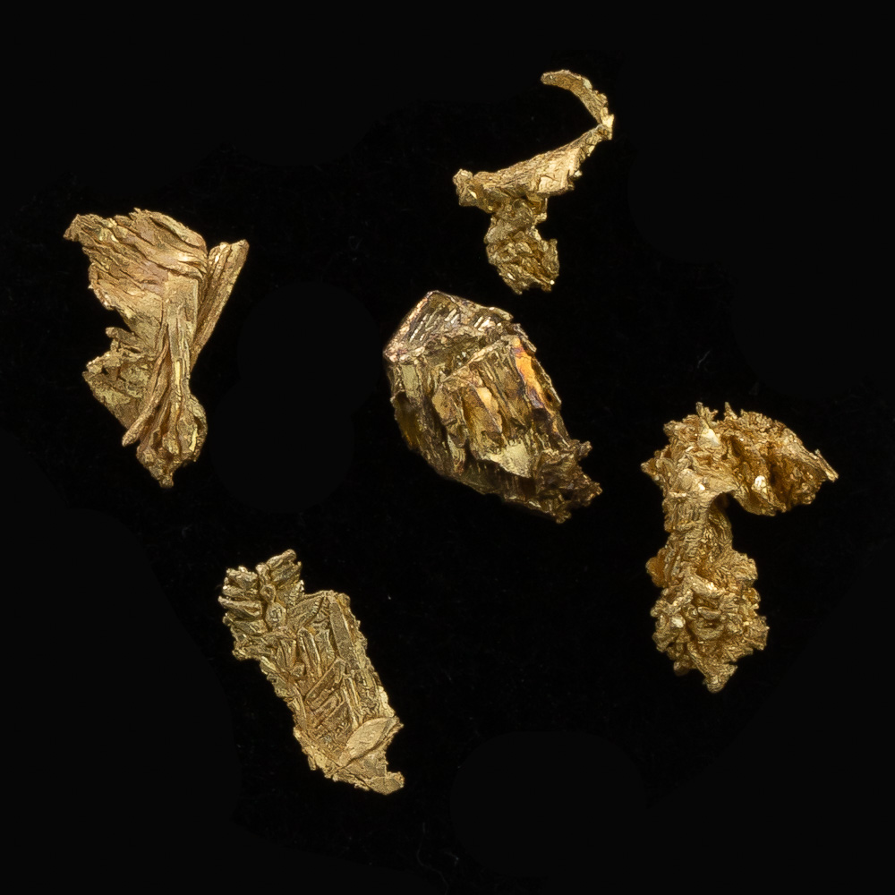 Brilliant Group of Gold Crystals from Round Mountian - Lot 129
