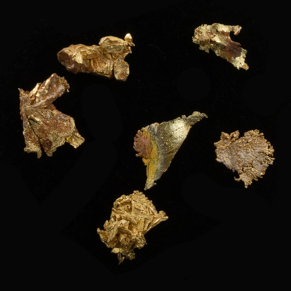 Brilliant Gold Crystals from the Round Mountain Mine - Lot 135