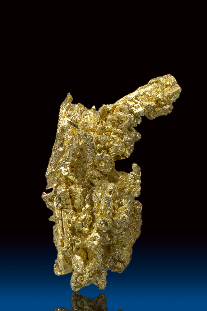 Brilliant Natural Gold Crystal Specimen from Round Mountain, NV