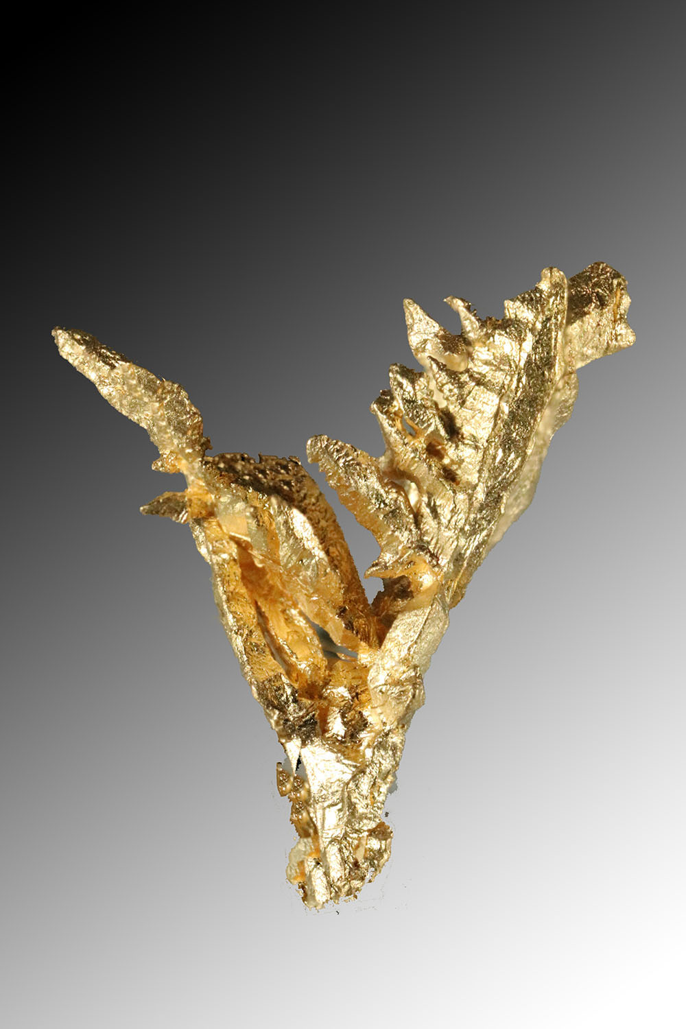 Faceted Natural Gold Crystal from Venezuela