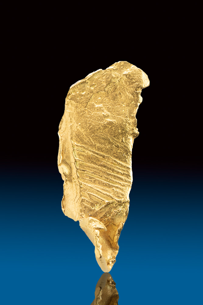 Striated Natural Leaf Gold Specimen from the Yukon