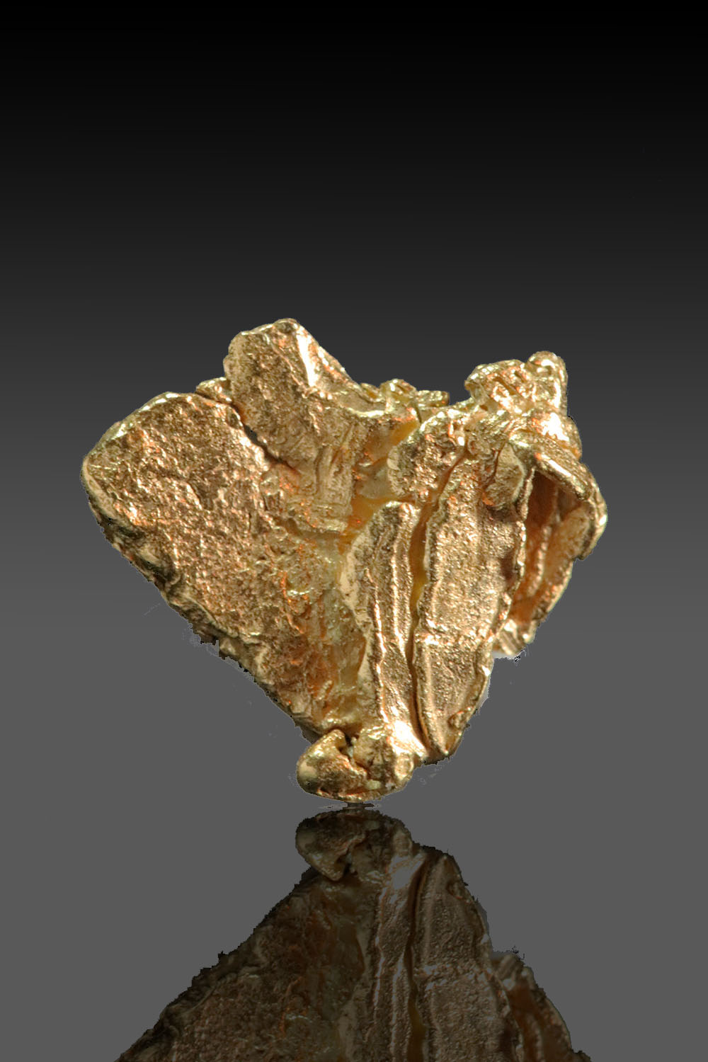 Folded Gold Specimen from the yukon Territory