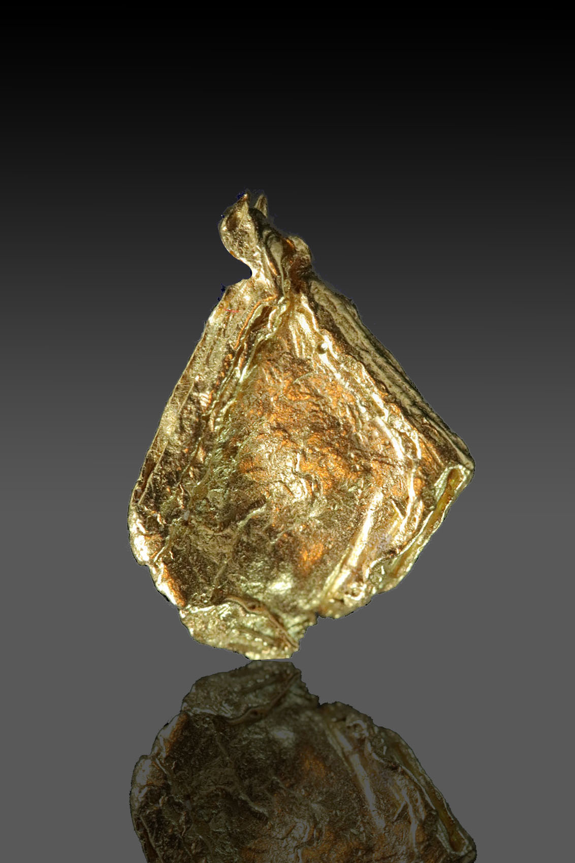 Striated Diamond Shaped Leaf Gold From the Yukon - Very rare - Click Image to Close