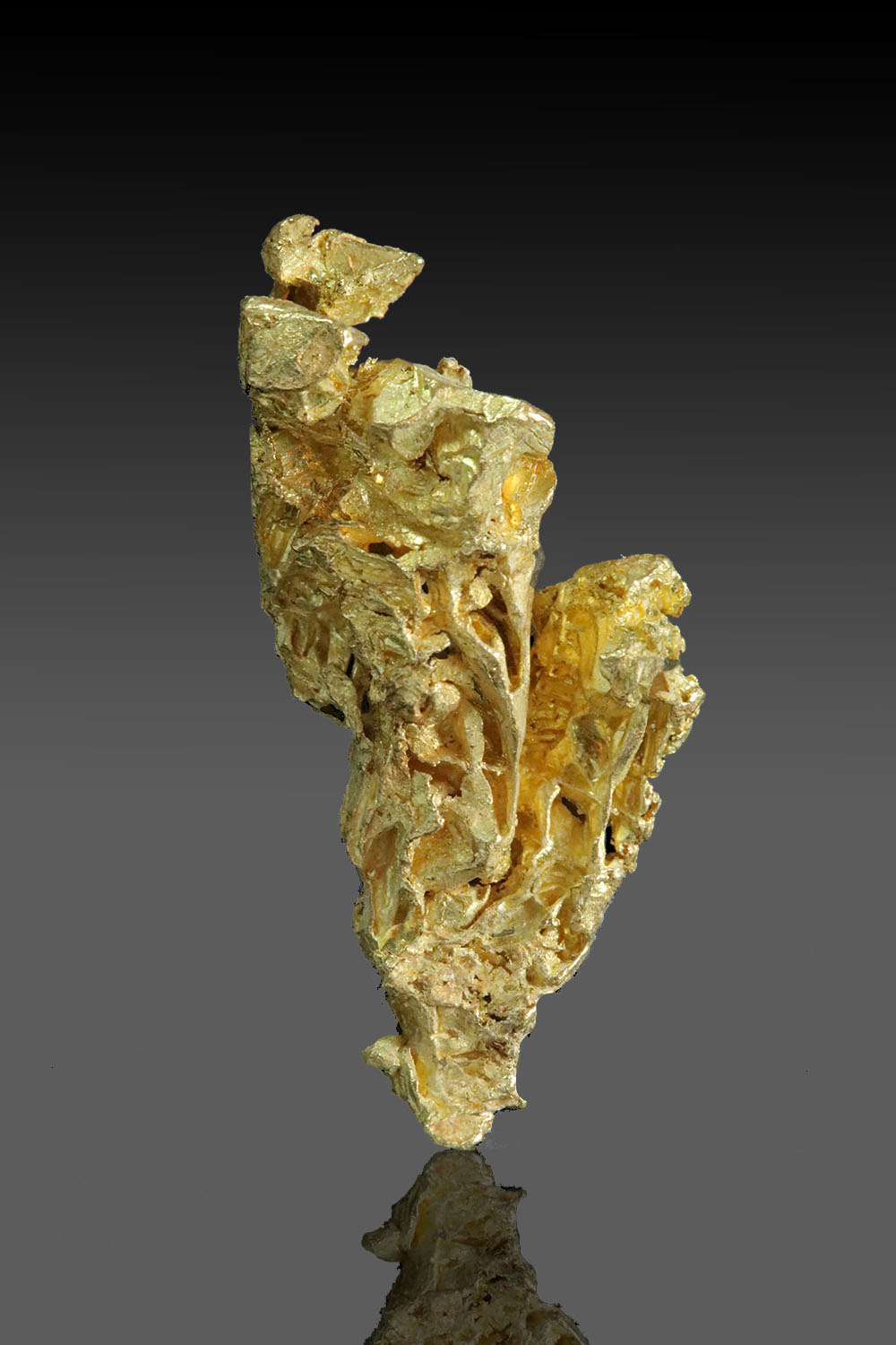 Long and Tapered - Brilliant gold crystal from the yukon