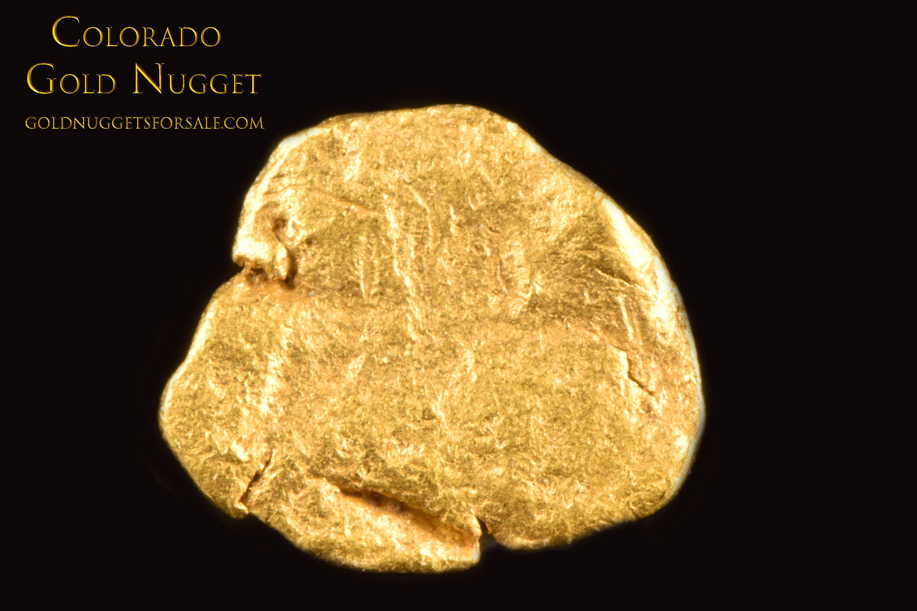 Flat and Rounded Native Colorado Gold Nugget