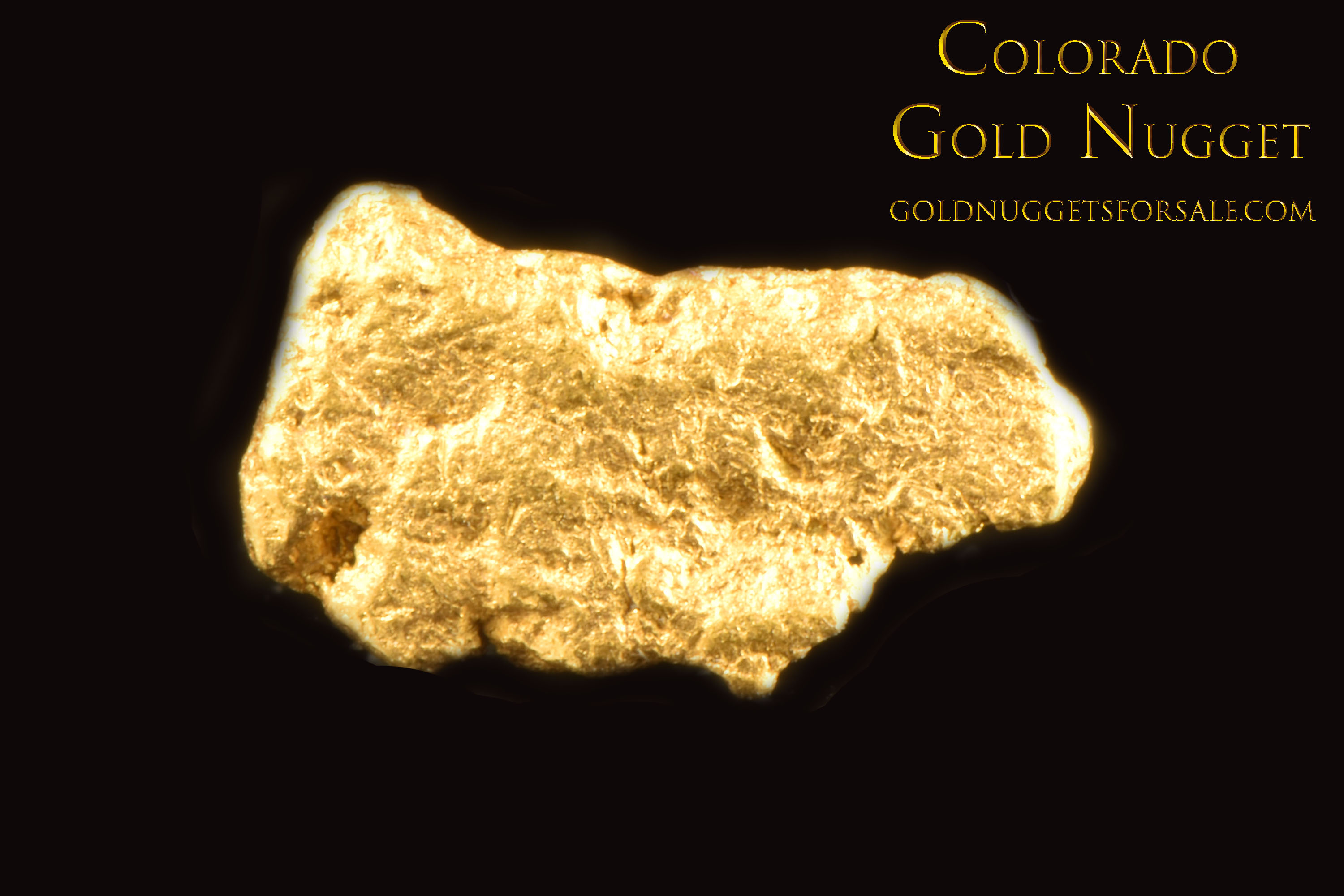 Colorado Gold Nugget - Great price