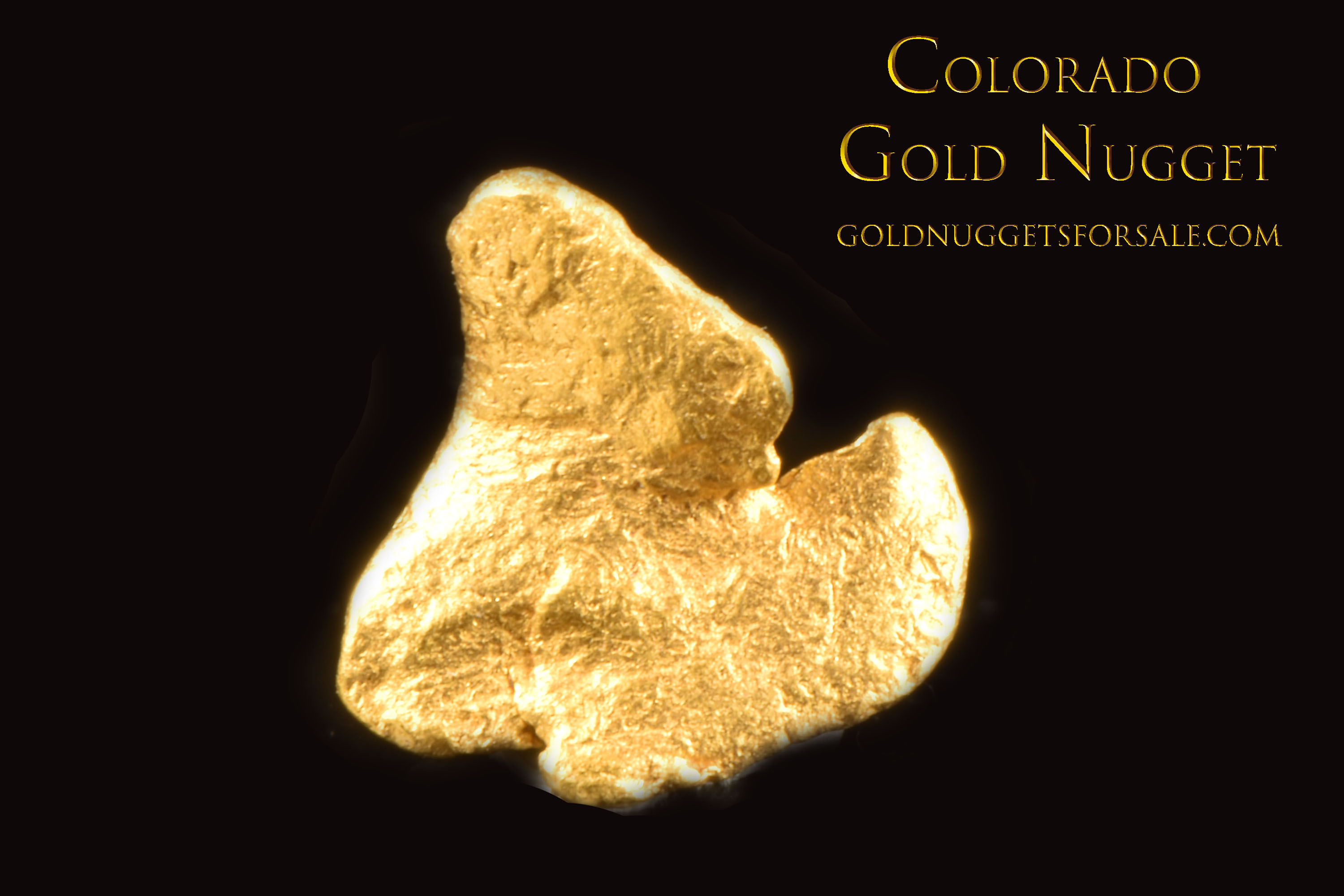 Colorado Gold Nugget - Intricate Shape and Great Price