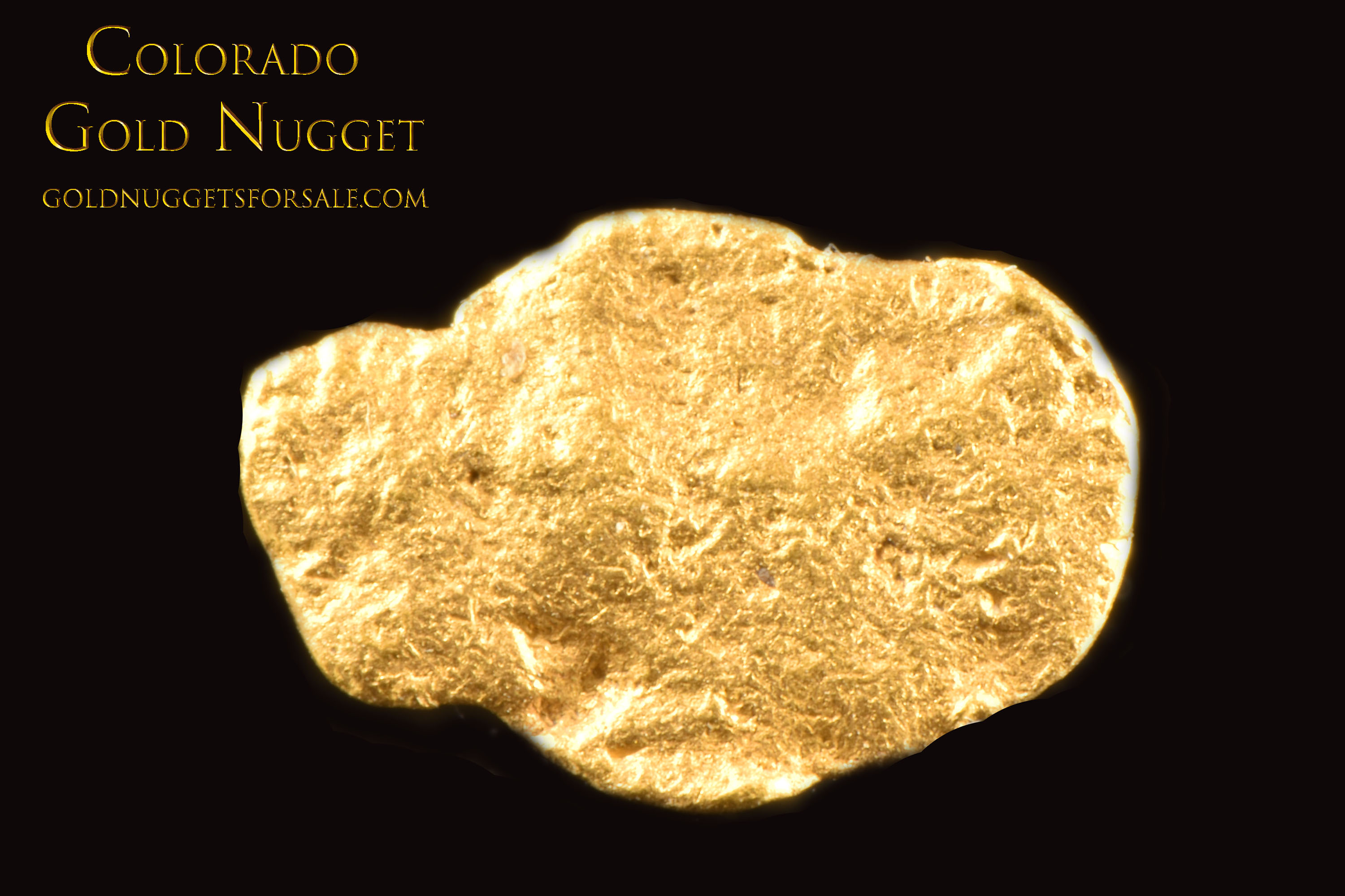 Thin and Shiny Jewelry Grade Colorado Gold Nugget