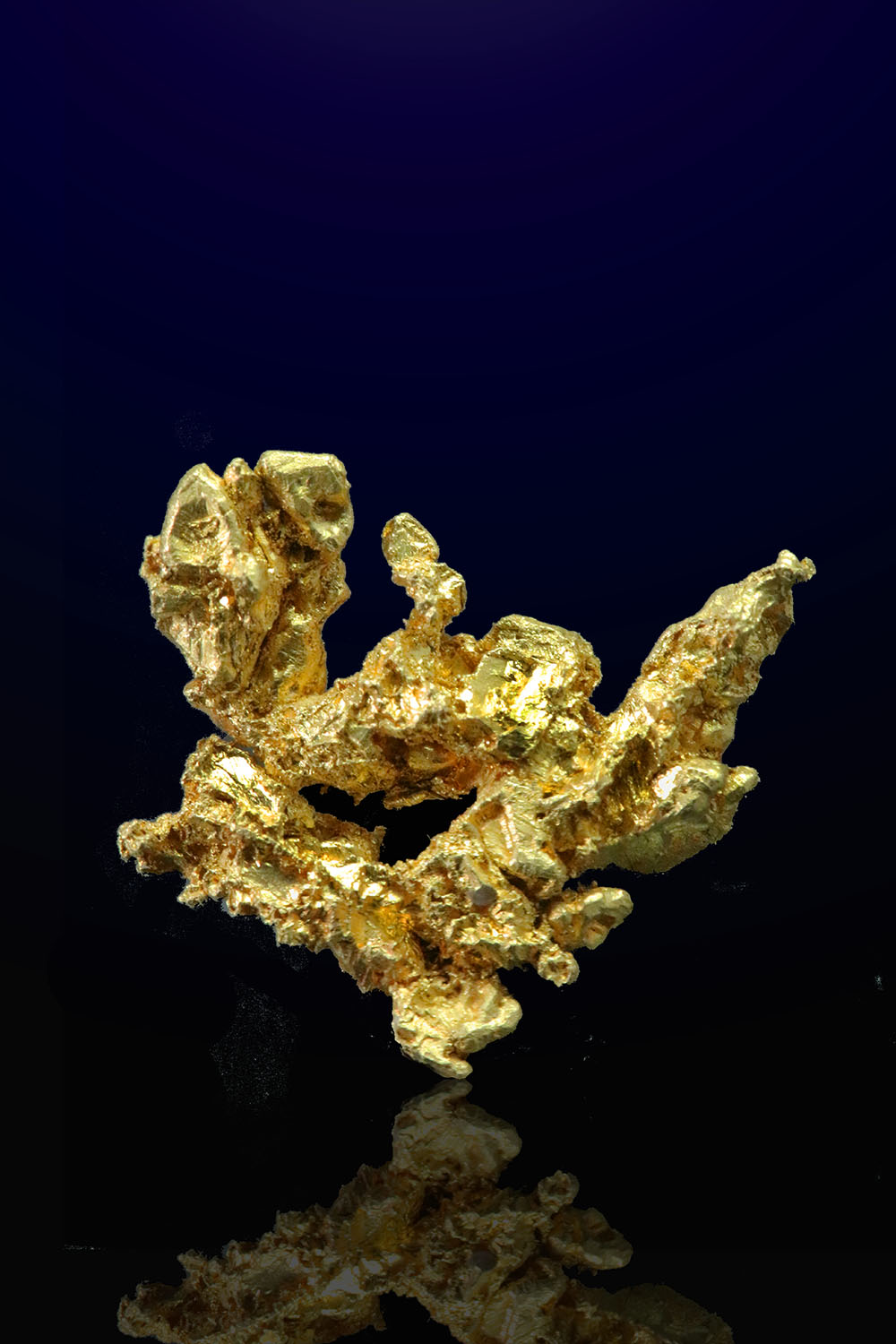 Colorado Quartz Mine, Mariposa, California - Gold Crystal