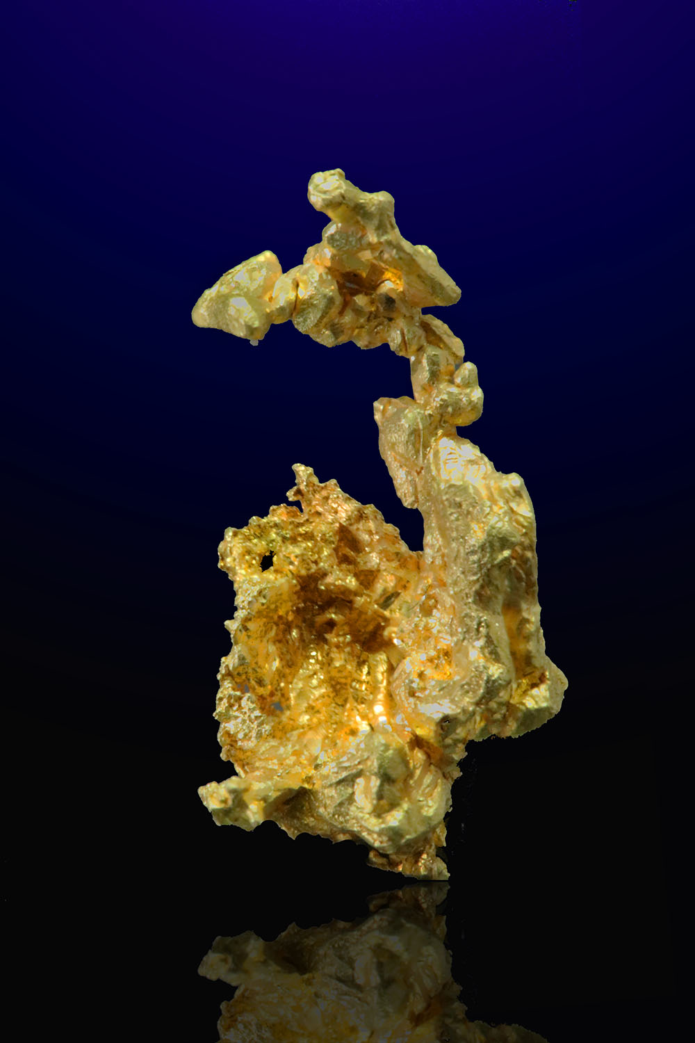 Mariposa County, California - Gold Crystal -Colorado Quartz Mine