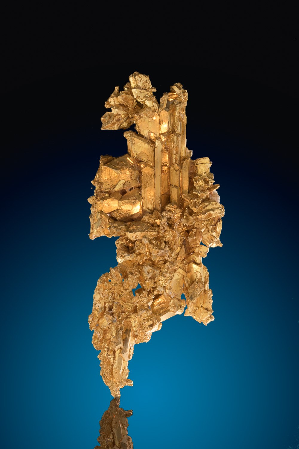 Sharp and Faceted - Brilliant Gold Crystal Specimen, Nevada