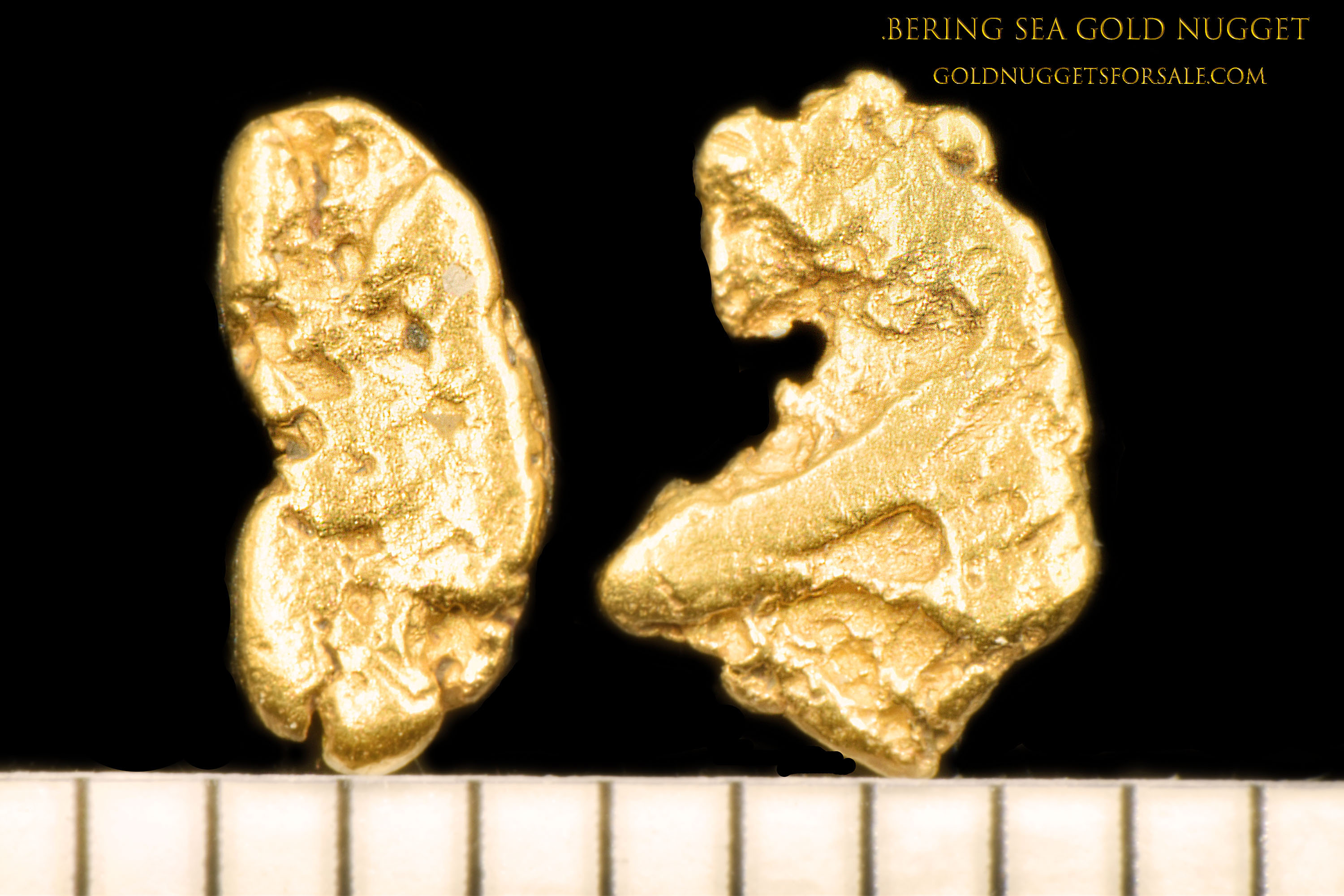 A Pair of Natural Gold Nuggets from the Bering Sea